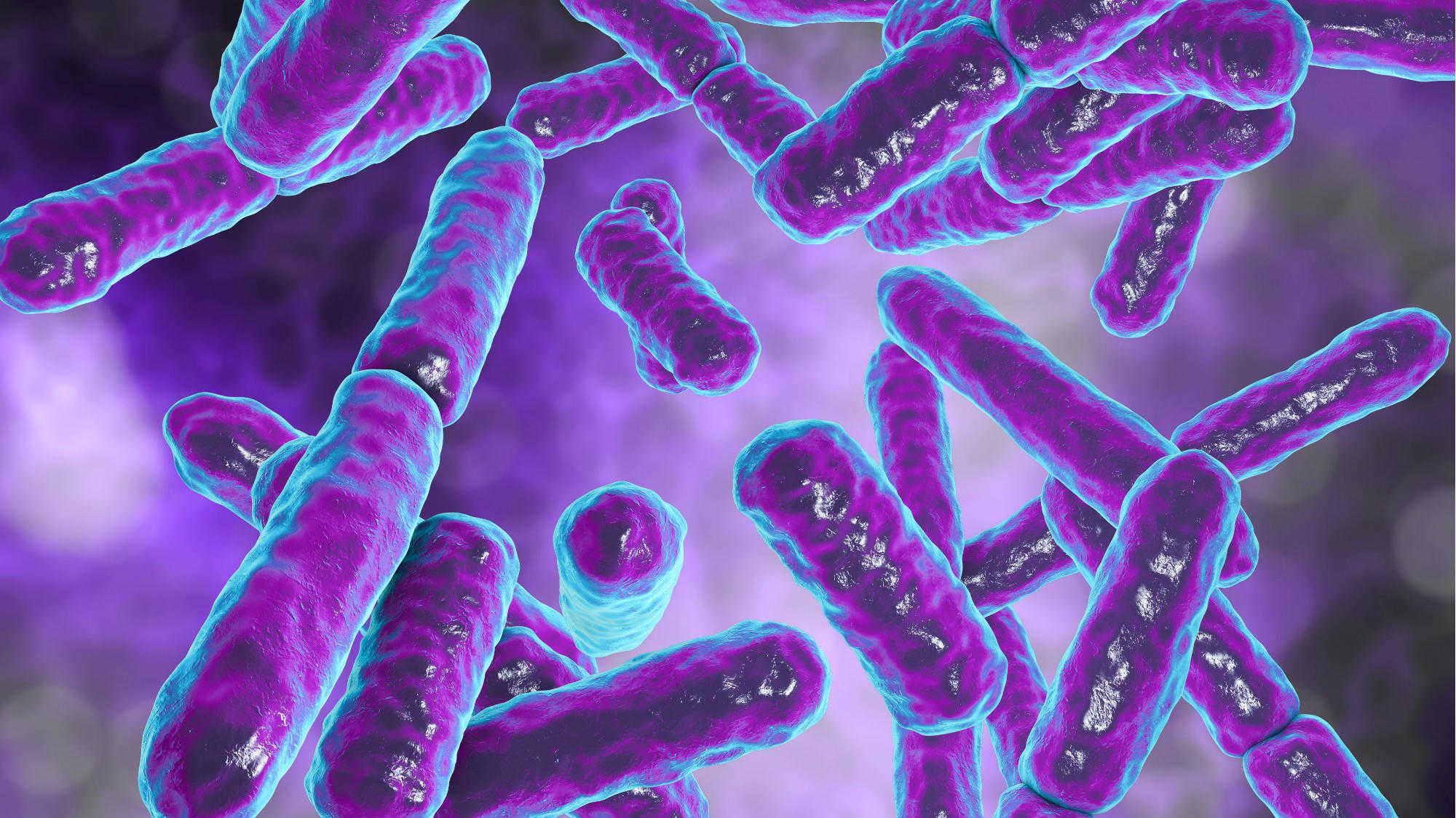Microbioma-2000x1125-